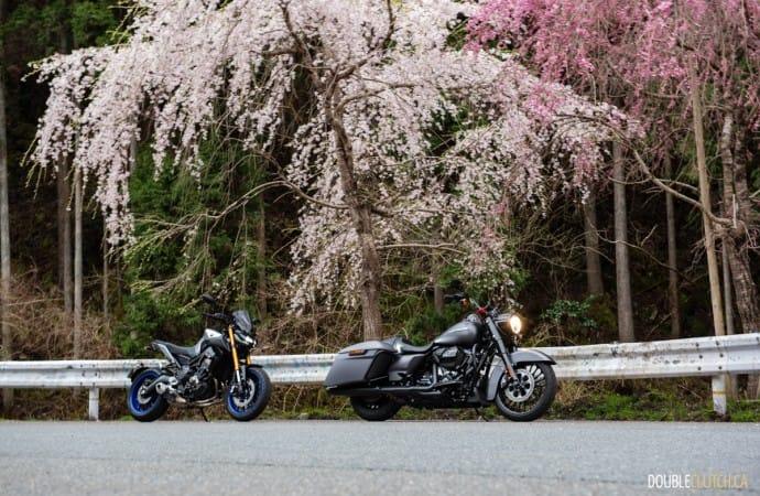 Road Trip: Japan by Harley-Davidson review